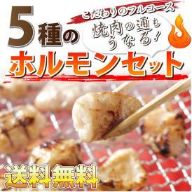 【送料無料】【冷凍】タレ漬け【送料無料】焼肉ホルモンセット!買えば買うほどオマケ付き