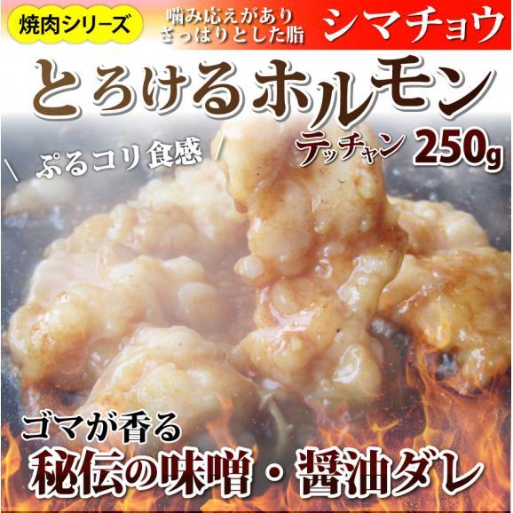 【 冷凍 】牛テッチャン タレ漬けホルモン(シマチョウ) 250g 焼肉用01