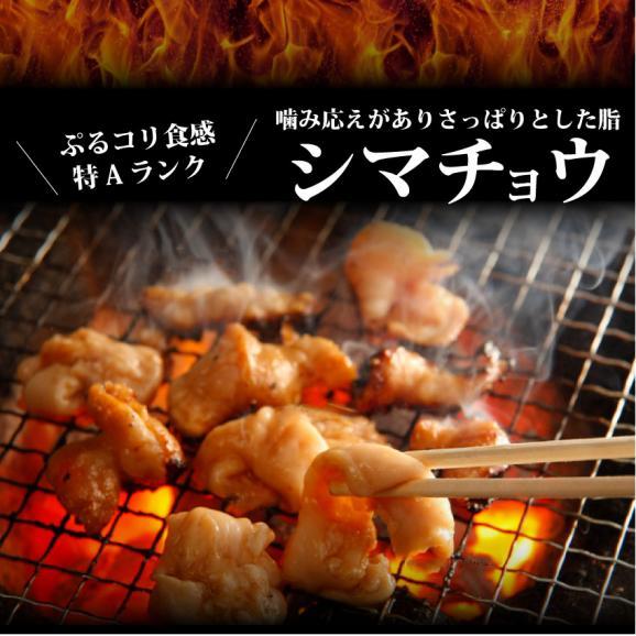 【 冷凍 】牛テッチャン タレ漬けホルモン(シマチョウ) 250g 焼肉用02