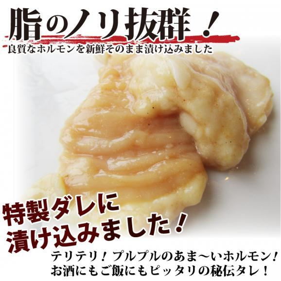 【 冷凍 】牛テッチャン タレ漬けホルモン(シマチョウ) 250g 焼肉用03