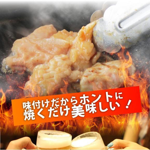 【 冷凍 】牛テッチャン タレ漬けホルモン(シマチョウ) 250g 焼肉用04