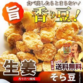 【送料無料・メール便発送】生姜豆(67g) 【同梱不可】【代金引換利用不可】