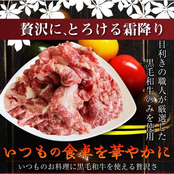 【送料無料】黒毛和牛!贅沢・霜降り切り落としたっぷりメガ盛り1kg( 和牛 切り落とし 訳あり 国産 牛 牛肉 1kg )02