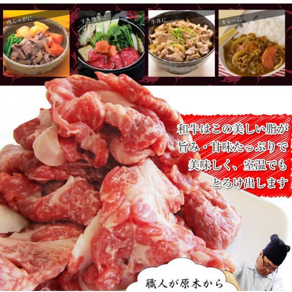 【送料無料】黒毛和牛!贅沢・霜降り切り落としたっぷりメガ盛り1kg( 和牛 切り落とし 訳あり 国産 牛 牛肉 1kg )04