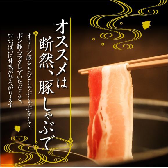 オリーブ豚バラスライス1kg【ブランド肉 豚肉 しゃぶしゃぶ 炒め物 バラ 冷凍 香川県】05
