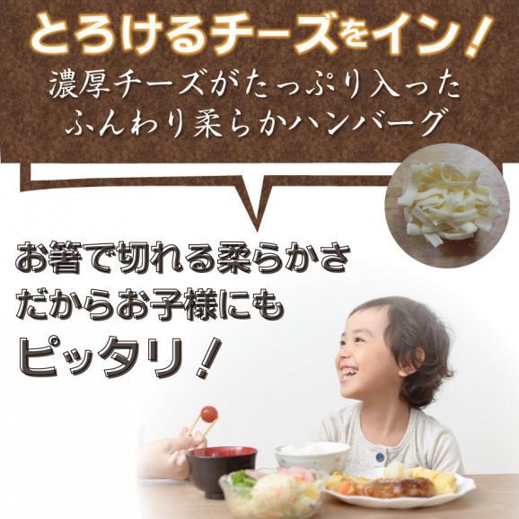 【冷凍】チーズインハンバーグ メガ盛り 1kg (12時までの御注文で当日発送、土日祝を除く)惣菜 弁当 おかず03