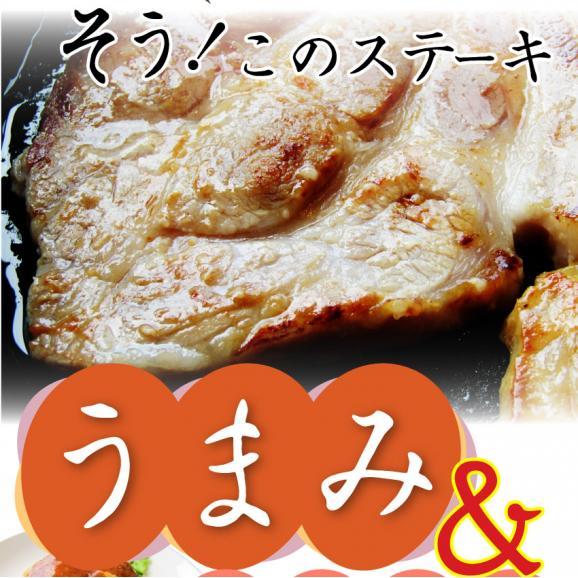 選べる 3種の味 トンテキ 2枚セット お試し 豚 ステーキ 肉 塩麹 西京漬け 味噌 豚丼 丼物 お試しセット 焼肉セット バーベキュー (父の日 食べ物 肉) 花見 惣菜 冷凍 行楽 BBQ06