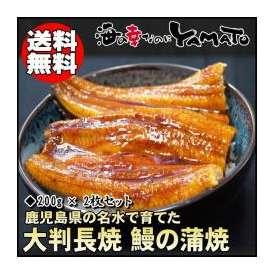 鰻の蒲焼 鹿児島県産 大判1枚200g×2枚 うなぎ ウナギ 丑の日 土用 樺焼 椛焼 かばやき 母の日 父の日