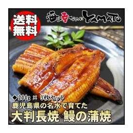 鰻の蒲焼 鹿児島県産 大判1枚200g×3枚 うなぎ ウナギ 丑の日 土用 樺焼 椛焼 かばやき 母の日 父の日