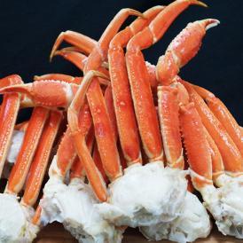 ボイル本ズワイ蟹 山盛り5kg かに カニ 蟹 ずわい蟹 メガ盛 グルメ 贈答 海鮮