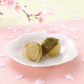 【春季限定】桜 栗苞 -さくら くりづつみ- 10個入り