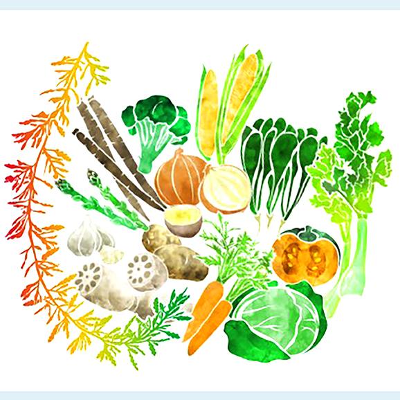 あかもくと国産野菜のブイヨン 2袋セット02