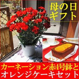 母の日ギフト 2019 送料無料 カーネーション鉢植え赤4号&オレンジケーキセット 早期割引