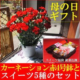 母の日 2018 カーネーション鉢植え赤4号&スイーツ福袋 銘菓伍撰