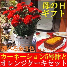 母の日 2018 カーネーション鉢植え5号&オレンジケーキセット
