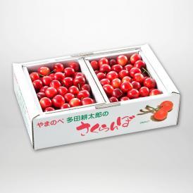 やまのべ多田耕太郎の紅さやか(バラ詰)500g×2