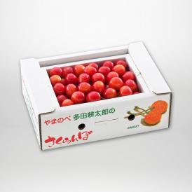 佐藤錦のバラ詰Lサイズ500g×1パックセットです。