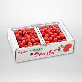 佐藤錦のバラ詰Lサイズ500g×2パックセットです。