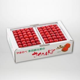 佐藤錦の本詰Lサイズ約500g×2パックセットです。