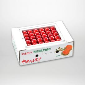 紅秀峰の本詰2Lサイズ約500g×1パックセットです。