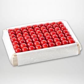 紅秀峰の特選桐箱詰2~3Lサイズ約1,100gです。