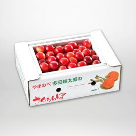 やまのべ多田耕太郎の紅姫(バラ詰・B級品)L500g