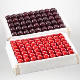 紅姫・サミットの特選桐箱詰2~3Lサイズ約1,100gです。