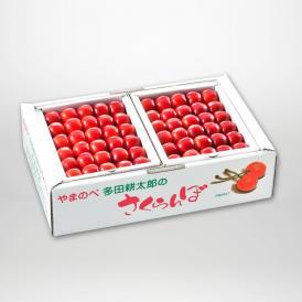 やまのべ多田耕太郎の紅姫(本詰)2L約500g×2