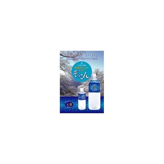 四国カルストのミネラルウォーター 天然の湧き水 「ぞっこん」 500ml