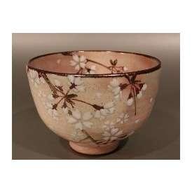 茶碗 乾山 桜