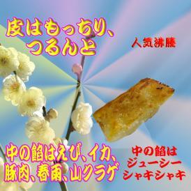 棒餃子(25g*16個)