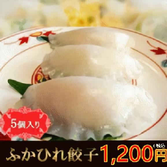 ふかひれ餃子01