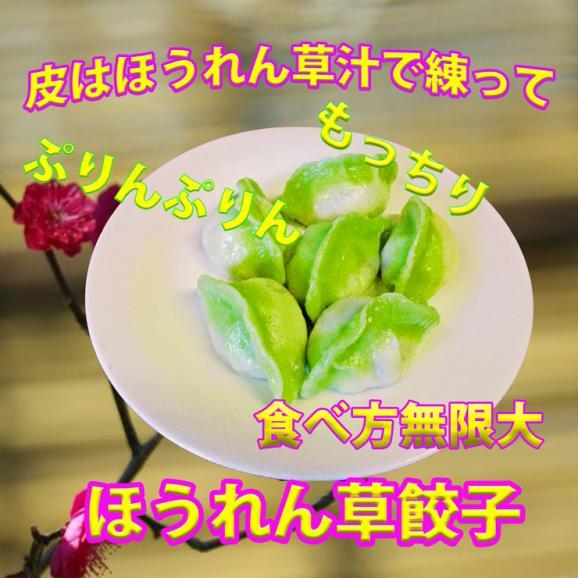 ほうれん草餃子【彩豪華餃子】(23g*12個)01