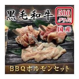 BBQ ホルモンセット  500g
