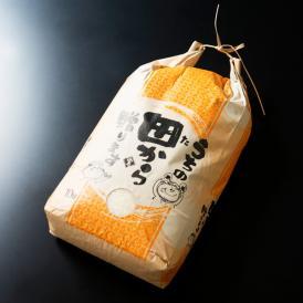 【送料無料※沖縄・離島は別途】石川県能登産こしひかり【令和元年度産新米】たかだ農園 雅祥米(がしょうまい)精米30kg