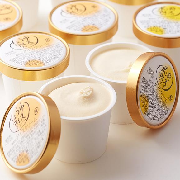 アイスクリーム 【12個入り】