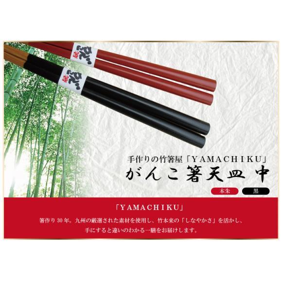 【メール便で送料無料!】がんこ箸中23cmクリア・赤・緑01