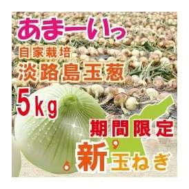 自社契約栽培 淡路島玉葱 極味 5kg