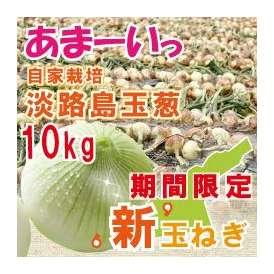 自社契約栽培 淡路島玉葱 極味 10kg
