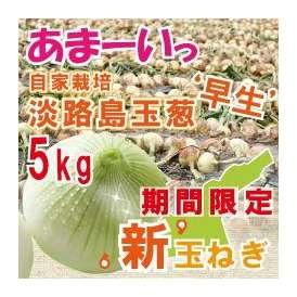 自社契約栽培 淡路島玉葱 極味 5kg 早生