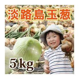 淡路島産玉葱 5kg
