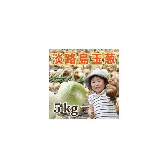 淡路島産玉葱 5kg01