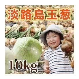 淡路島産玉葱 10kg