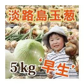 淡路島産玉葱 5kg 早生