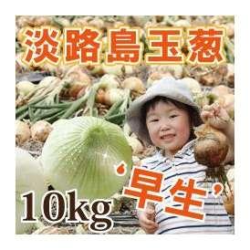 淡路島産玉葱 10kg 早生