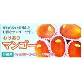 沖縄県産マンゴー ちょい訳あり 約2kg(4〜8個)【発送時期8月上旬〜8月下旬】