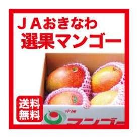 【JAおきなわ正規品】マンゴー 約1.5kg 【ポイント10倍】【カード・代引限定】