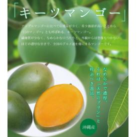 宮古島キーツマンゴー 約2.5kg 【発送時期7月中旬~9月上旬】