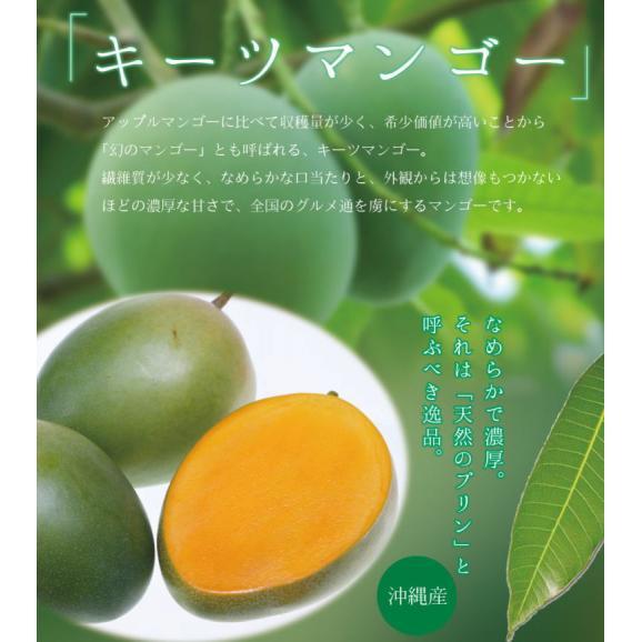 宮古島キーツマンゴー 約2.5kg 【発送時期7月中旬~9月上旬】01