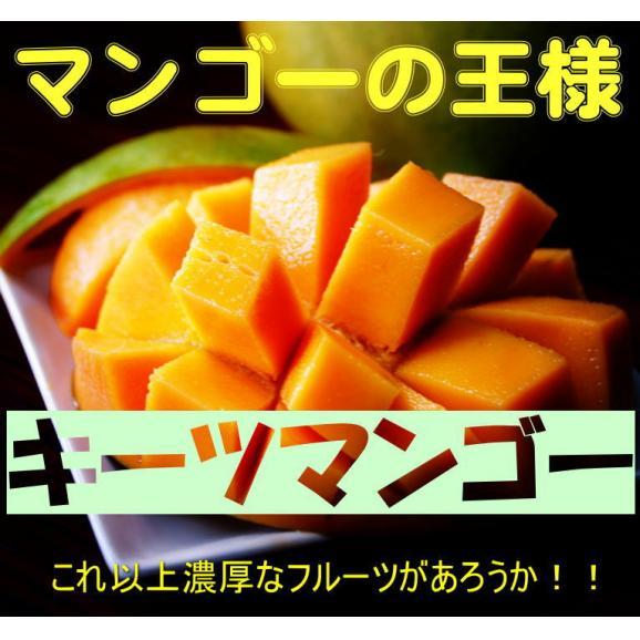宮古島キーツマンゴー 約2.5kg 【発送時期7月中旬~9月上旬】05